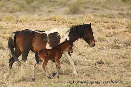 Kiowa and baby
