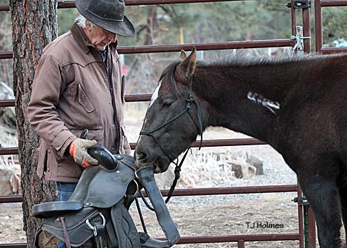 Asher checks out his saddle.