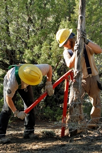 Southwest Conservation Corps crew members Abby and Aaron use the post puller to remove a rotted post in Spring Creek Basin's southeastern fence line.