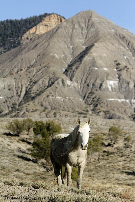 Alegre, McKenna Peak, Temple Butte