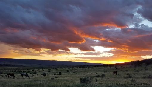 Spring Creek Basin at sunset