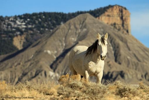 Comanche, McKenna Peak and Temple Butte.