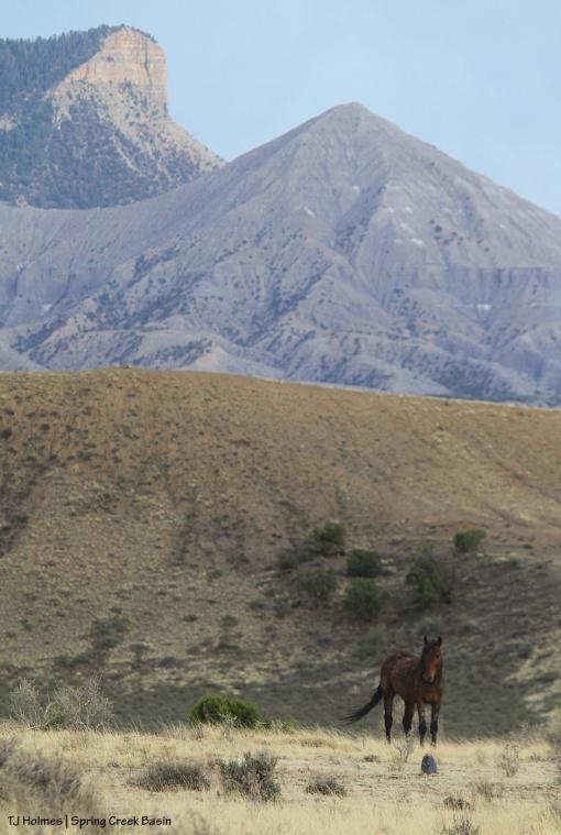 Copper; McKenna Peak and Temple Butte