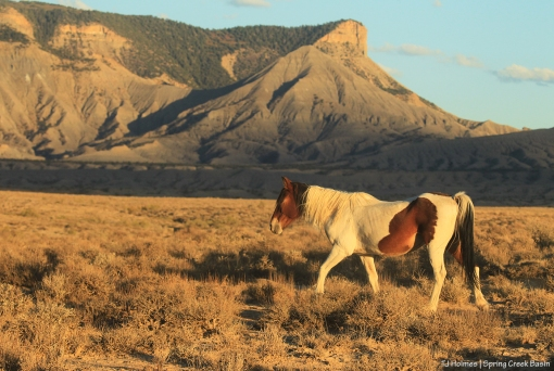 Chipeta; McKenna Peak and Temple Butte