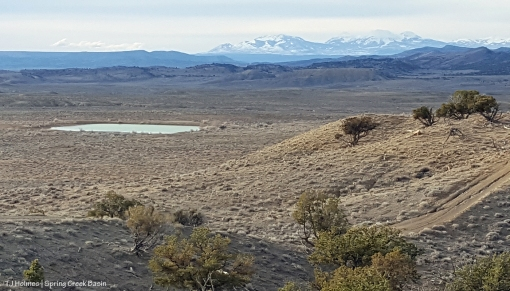 Roller-coaster ridge pond; La Sal Mountains in the background.
